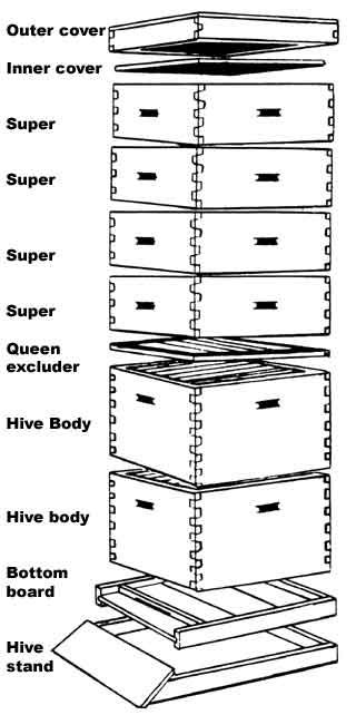 Langstroth Hive Plans   Hives should not be set directly on the ground. Some sort of hive ...