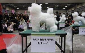 Увлечение японцев: стрижка собак в кубической форме