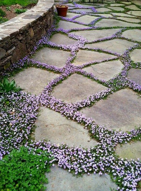 How To Create A Flower Bed Border