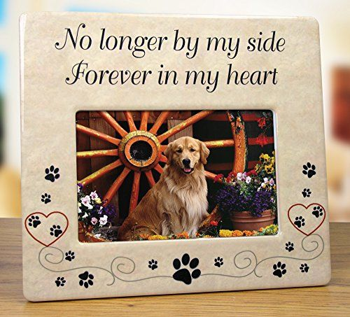 Pet Memorial Ceramic Picture Frame - No Longer By My Side Forever in My Heart - Loss of a Pet Gift - Pet Photo Frame - Pet Sympathy Gift - In Memory of a Pet Banberry Designs http://www.amazon.com/dp/B00SG9PD22/ref=cm_sw_r_pi_dp_FLD.ub1CCN7RN