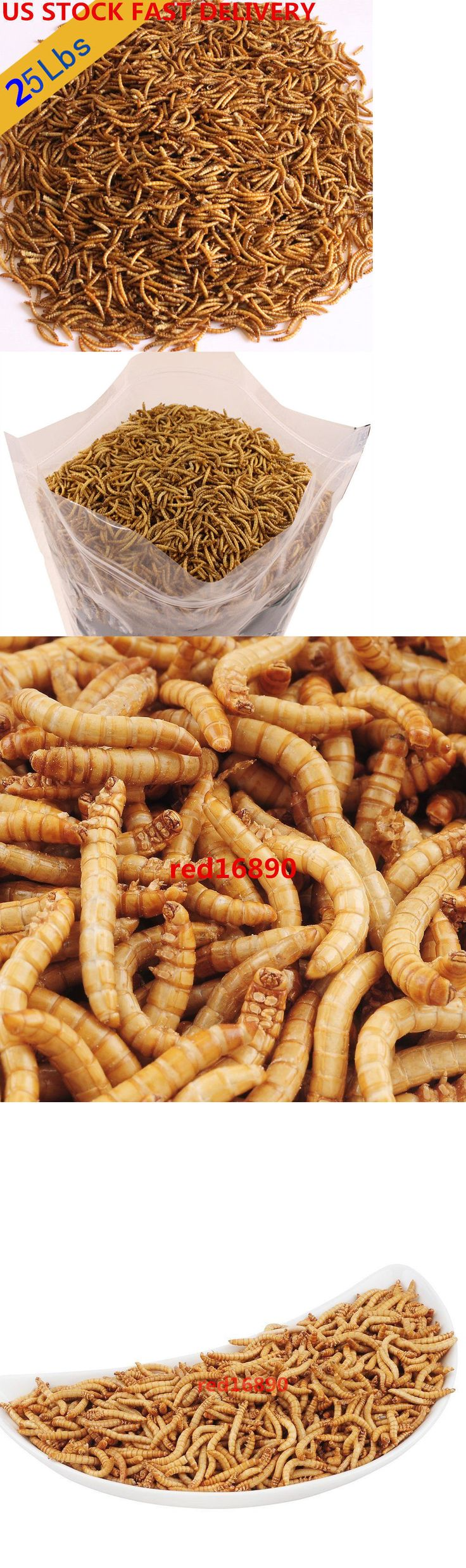 Food and Treats 116494: 25Lbs Us Stock 11.25Kg Bulk Dried Mealworms Treats For Chickens Fish Wild Birds -> BUY IT NOW ONLY: $136.79 on eBay!