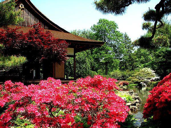 Shofusu. Japanese House, Parks ...