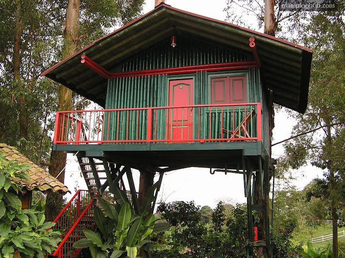 Glamping Quindio Colombia, Tree House in Armenia (Carlaca), a unique lodging.