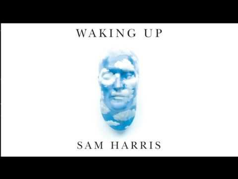Sam Harris & Andrew Sullivan on Economic Inequalities and Technological Unemployment https://www.youtube.com/watch?v=OhQOvqykDys