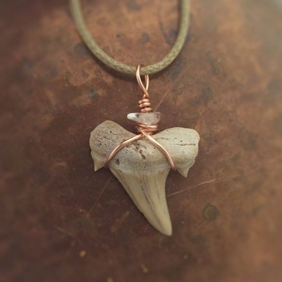 Shark Tooth Necklace / Shark Tooth with Quartz by CrystalSensation