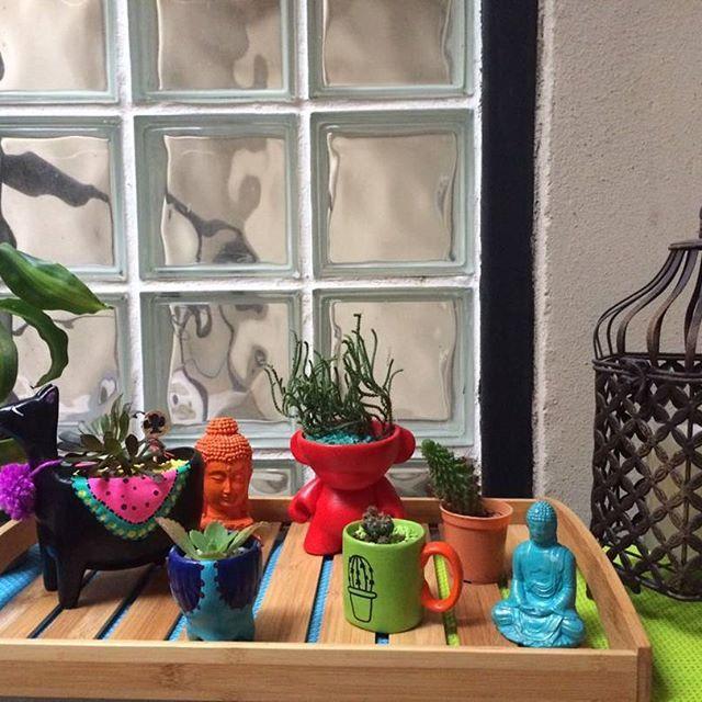 Gracias @wichoalvarado por la foto!! Quedo hermoso!!! Un genio de la fotografia #decoracionoriental  #budas  #jaulasdecorativas  #decohogarlilian #deco #decoracion #cactus #jardines