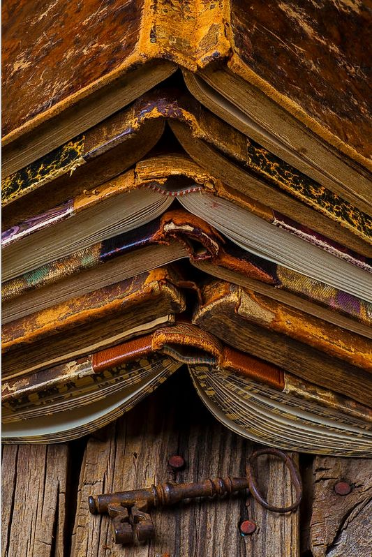 It's a lovely picture, but I keep thinking of the stress it's putting on those poor book spines...