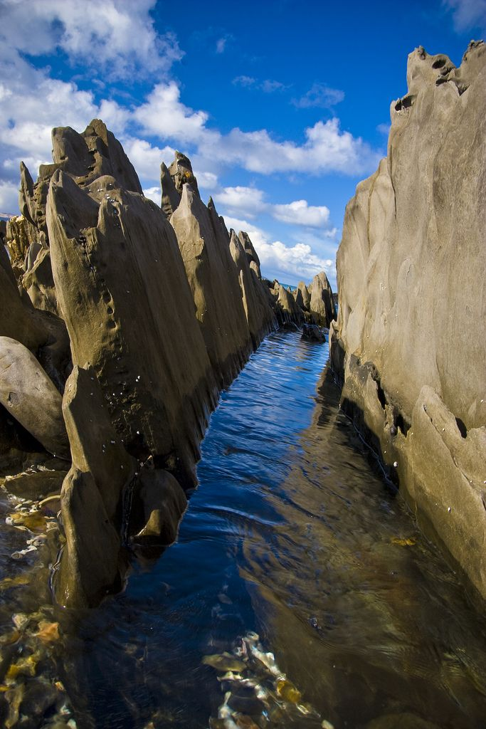 Penneshaw's coast in Kangaroo Island_ South Australia