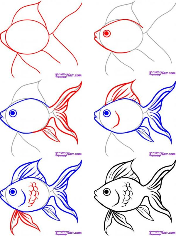 how-to-draw-a-fish