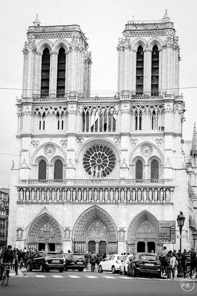 ' You talk about her as if she is the #Notre Dame Cathedral. Well.. She is! '  #Architecture Album   www.talosdarius.ro