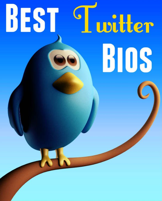 What can you learn from the Best Twitter Bios? how to make your #twitter profile rock!  #socialmedia
