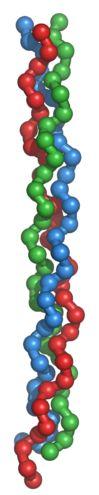 El colágeno permitirá regenerar tejidos humanos en el futuro #Colageno #RegenerarTejidosHumanos http://www.avanxel.com/blog-de-aparatologia-estetica/76-el-colágeno-permitirá-regenerar-tejidos-humanos-en-el-futuro.html