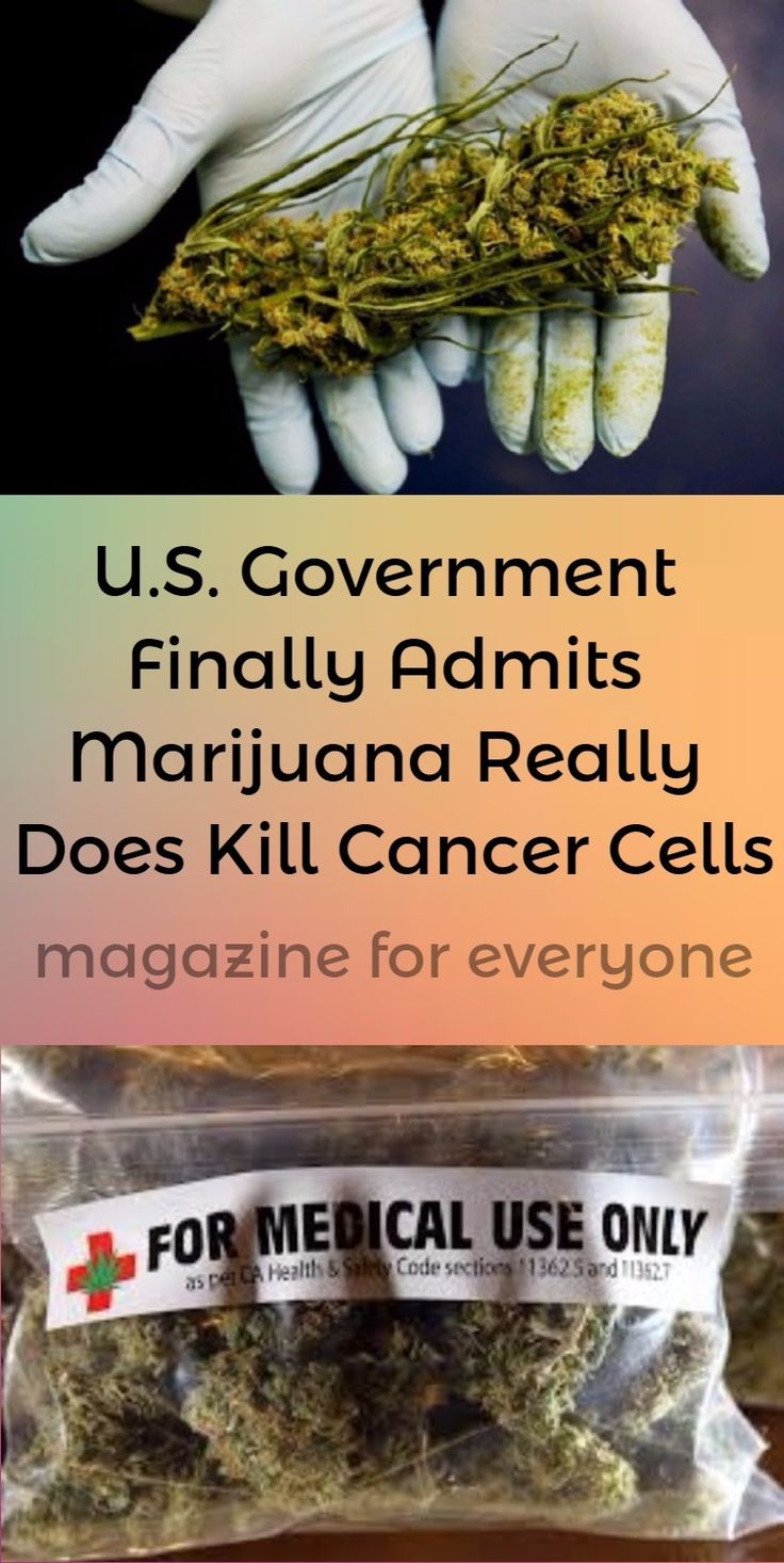 The idea that cannabis kills cancer cells seems to no longer be a conspiracy theory in the United States.