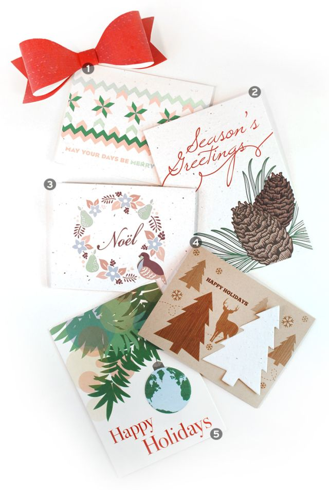 Eco-friendly Corporate Holiday Cards - plant them, grow flowers ...