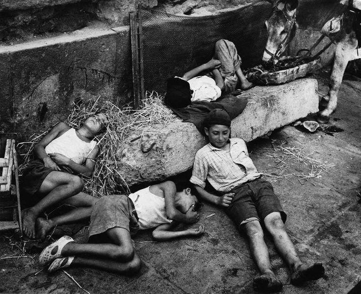 ITALY. Naples. Siesta in the donkey stall. 1949. photography Herbert List