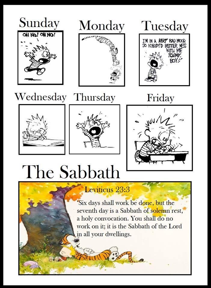 Leviticus 23:3 ~ Shabbat Shalom!