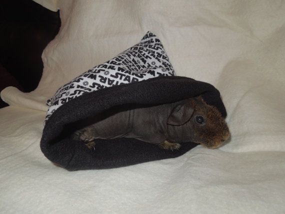 ... images about skinny pigs on Pinterest | Shops, Cuddle bed and Pigs