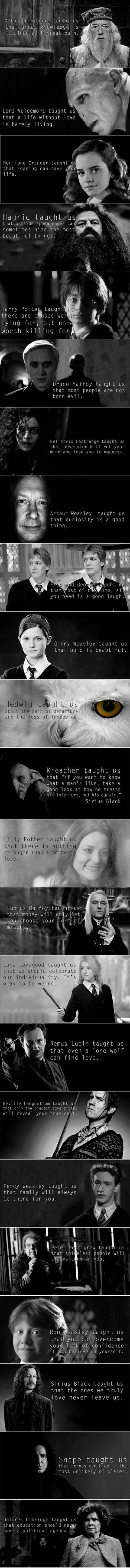 What the Harry Potter books taught us..