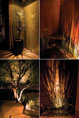 Fantastic Ideas Of Outdoor Uplighting Home Decor Pinterest Gardens Indoor Ferns And