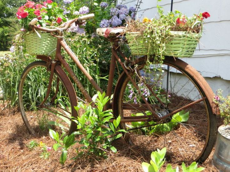 paint an ollld bike green and put plants in the basket and rear basket in front of house