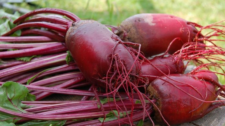 The Unbeatable Beet: Health Benefits of Beets and Beet Juices