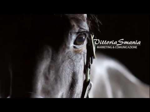 Whisper, my horse - an athlete / an actor!