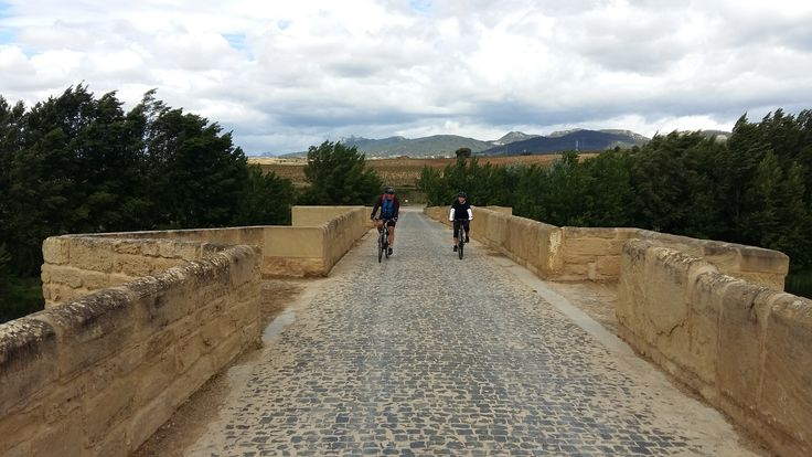 Perfect cycling weather in the popular wine region of Spain, Rioja and Ribera Cycling