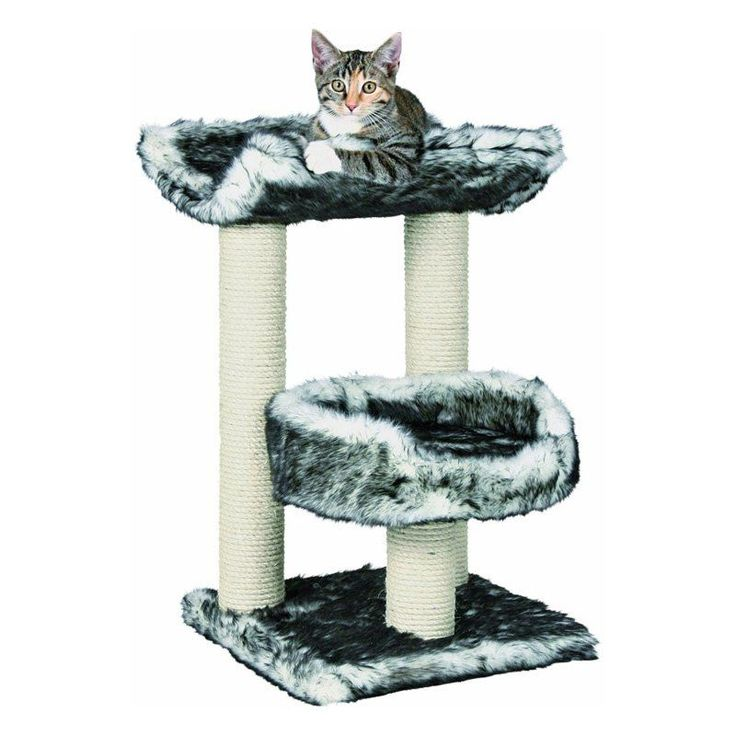 Trixie Pet Products Isaba Cat Tree | from hayneedle.com