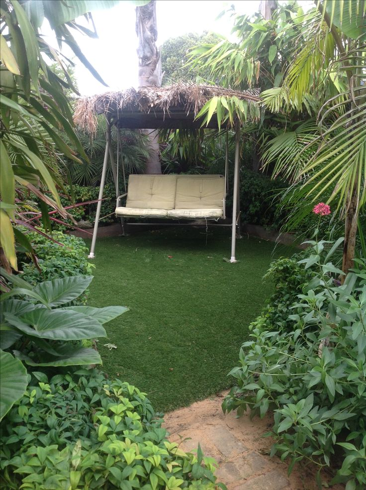 My tropical garden in Geelong, Australia. Cool climate.