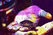 """New artwork for sale! - """" Turtle Pet Cute Shell  by PixBreak Art """" - http://ift.tt/2u4pIqc"""