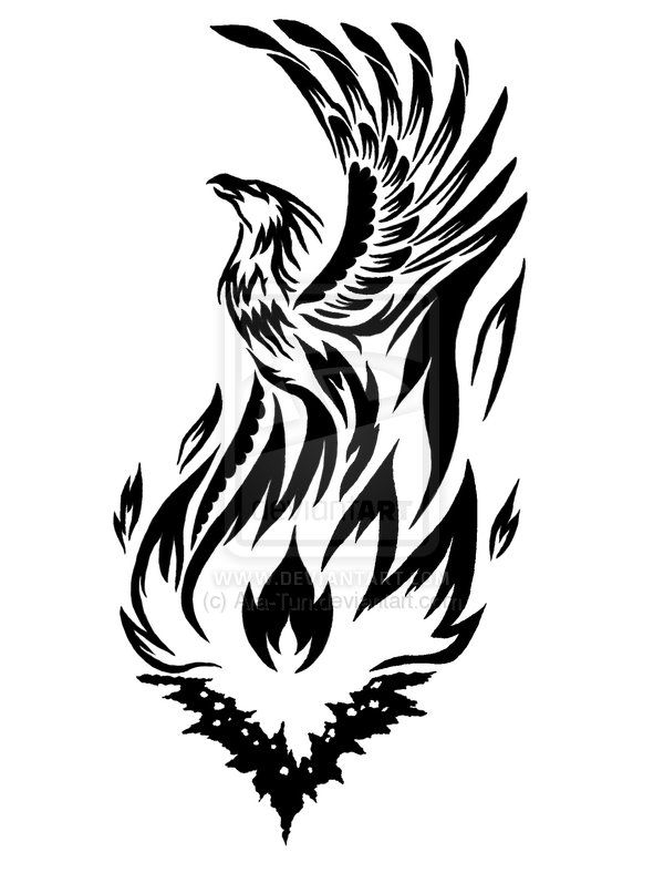 It says this is Tribal Art Tattoos For Men but I like this... may be even better if wings were on the first downward pump out of the fire