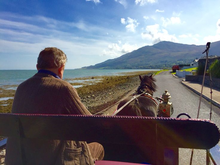 A horse and carriage ride in Omeath County Louth is a must! © Sarah Murphy
