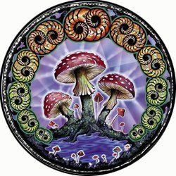 Mushroom Spare Tire Cover for Jeep RV Camper VW Trailer etcall sizes available >>> Check out this great product. (It is an affiliate link and I receive commission through sales)