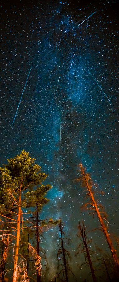 Perseids Meteor Shower and Milky Way in the skies above Northern California (2012)