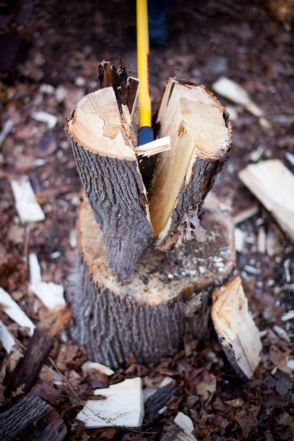 612 Best Wood Pile Images On Pinterest Firewood Nature