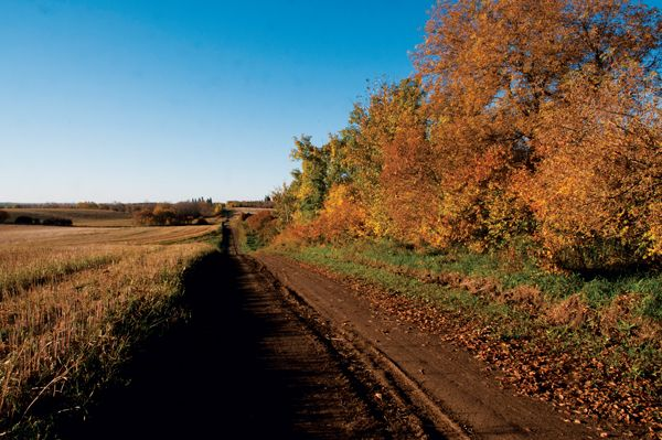 The colours of the harvest season invite a stroll on a country road near Norquay, SK. Photo by Lionel Hughes, part the Prairies North 2015 Saskatchewan Scenes Calendar: https://www.prairiesnorthstore.com/store/index.php?_a=product&product_id=136&utm_source=utm_source%3Dsocialmedia&utm_medium=utm_medium%3Dsocial&utm_campaign=utm_campaign%3Dcalendar