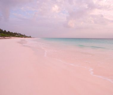 Harbour Island .. Pink sand