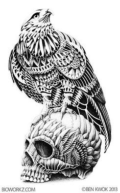 Just wow. Red Tail Hawk on Skull by Ben Kwok