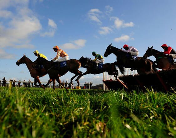 Discover horse racing betting tips for Lingfield, Southwell, Wolverhampton. Start here by getting expert info and win consistently. You're close to something big with oddsdigger.com!