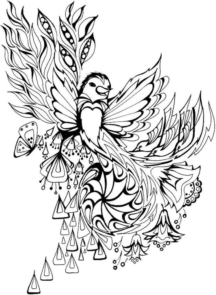 Welcome To Dover Publications Creative Haven Dream Birds Coloring Book