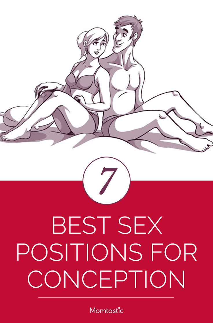 conception position sex