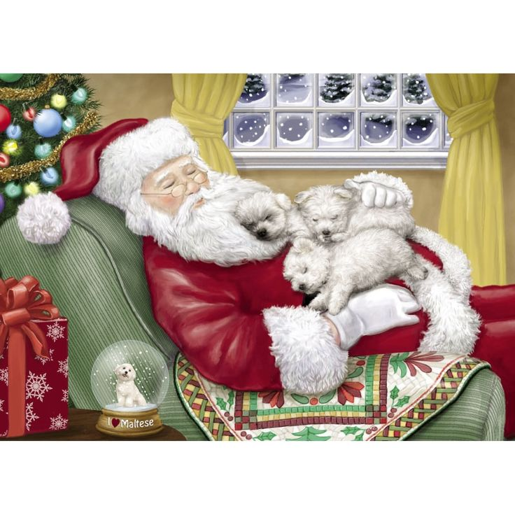 Absolutely Adorable! No longer Available as of 2014 Maltese Napping Santa  Maltese Christmas Cards - The Danbury Mint