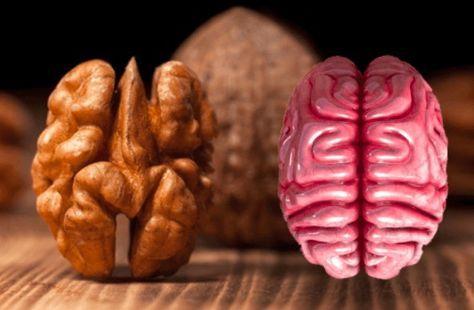 Ces 8 aliments ressemblent à des organes. Ce n'est pas tout, ils les soignent aussi ! noté 5 - 1 vote Avez-vous déjà entendu parler de la théorie des signatures (autrement appelé principe de signature)? C'est une théorie méconnue qui voit une corrélation entre le bénéfice apporté par un fruit ou un légume et la...