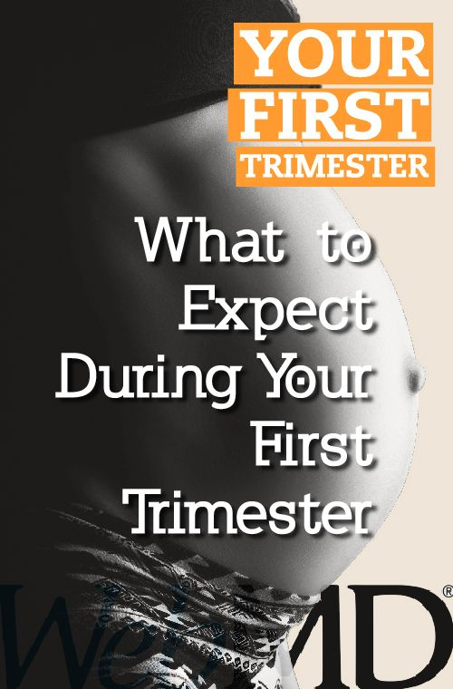 Top 25 Ideas About Your First Trimester On Pinterest