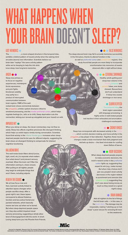 This is a fantastic infogram, created by Mic.com who are currently working with GE Scientists to bring you up to date research into the brain and related technologies. As you can see from this infogram, not getting enough sleep has some interesting effects on different regions of the brain, and subsequently how we think and behave. For example, sleep deprivation reduces the connectivity in the amygdala and the medial frontal cortex which can lead to less control over emotions and heightened…