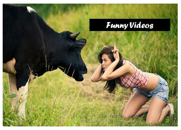 As we all know that YouTube is becoming famous day by day. People are searching for YouTube videos more. That is why I am going to share some best YouTube videos. I am going to share some funny YouTube videos. Watch this YouTube Funny Videos-Most Funniest Videos-YouTube Videos.   #comedy videos #crazy girl videos #download funny videos #funny prank videos #funny videos #whats app funny videos #youtube funny videos #youtube videos