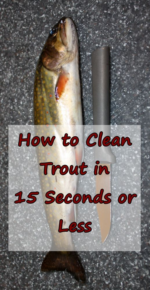 how to clean trout for frying