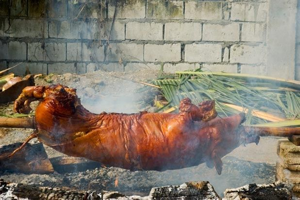 How to Safely Do a Backyard Pig Roast Slideshow | The ...