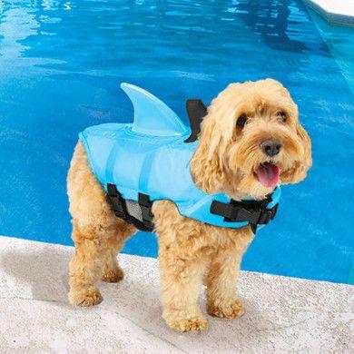 Shark Fin Dog Life Jacket! http://whatpetswant.com/shark-fin-dog-swim-vest/