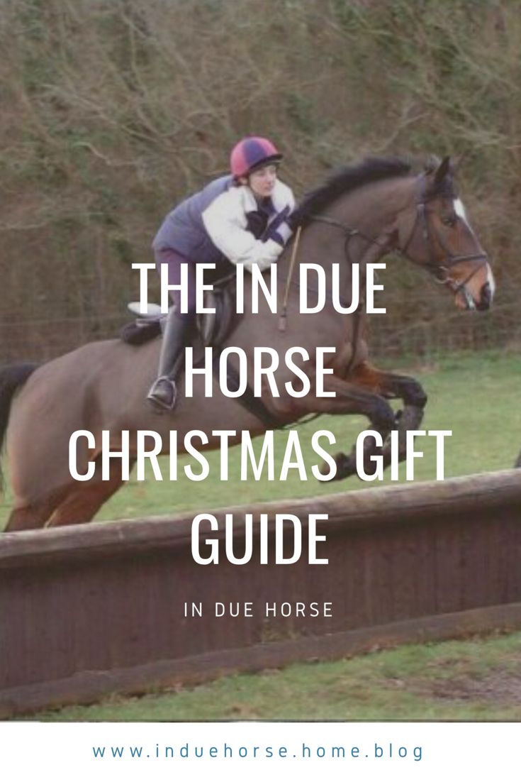 Equestrian blog , horses, horse blogger, gifts for equestrians ...